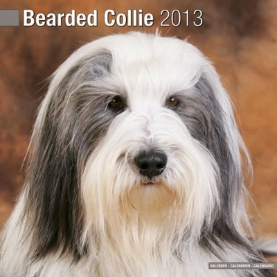 Petprints Bearded Collie Calendar
