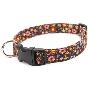 Brown Designer Dog Collar with Flowers