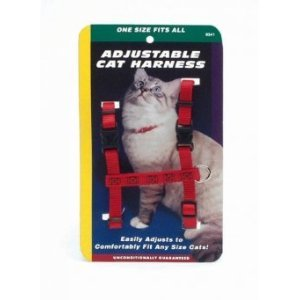 Costal Adjustable Figure H Harness