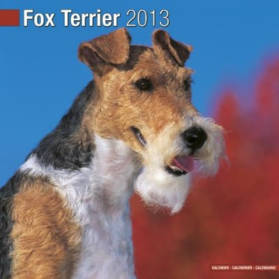 Petprints Fox Terrier Calendar