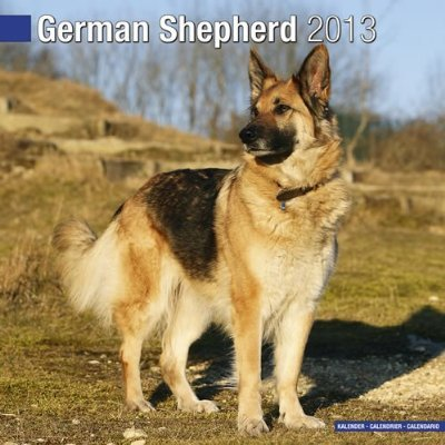 Petprints German Shepherd Calendar