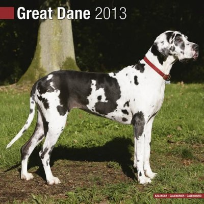 Petprints Euro Great Dane Calendar