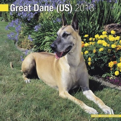 Petprints Great Dane Calendar