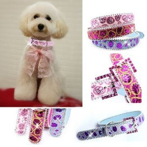 Handcrafted Fusion Rhinestone Buckle Dog Collar