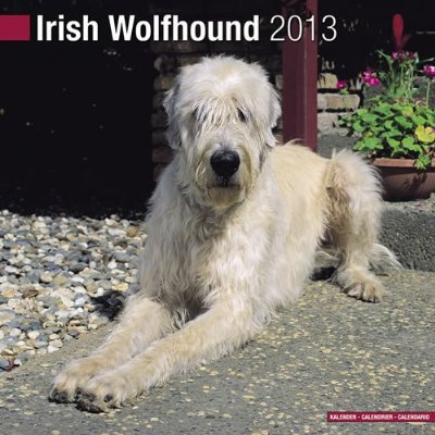 Petprints Irish Wolfhound Calendar