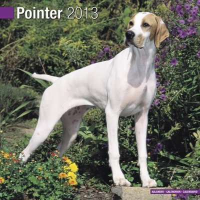 Petprints Pointer Calendar