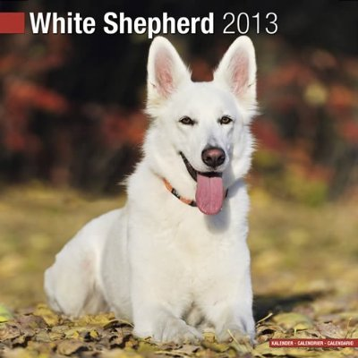 Petprints White German Shepherd Calendar